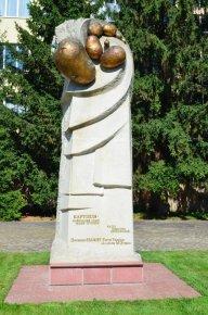 День Поля в Институте картофелеводства УААН (Немишаево)