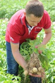 Відкриття нового картоплесховища Агріко Україна