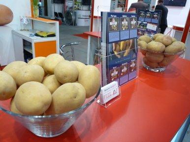 Выставка «Фрукты. Овощи. Логистика 2015»