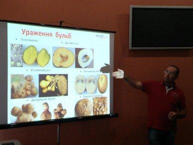 Мастер-класс по выращиванию картофеля (Луцк 22 октября 2015г.)