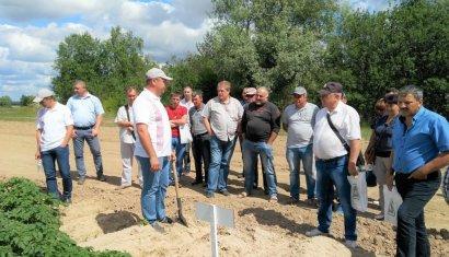 День поля в хозяйстве «Агрико Украина» на Черниговщине