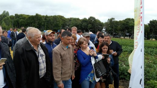 Посетить День поля в Немишаево: выполнено!