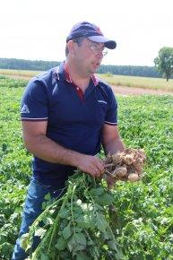 Открытие летней сессии мероприятий «Агрико Украина»